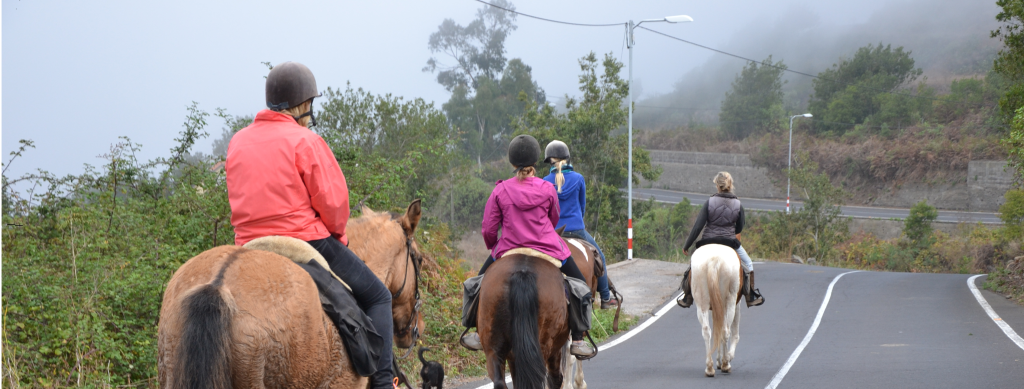 Horse riding in Tenerife