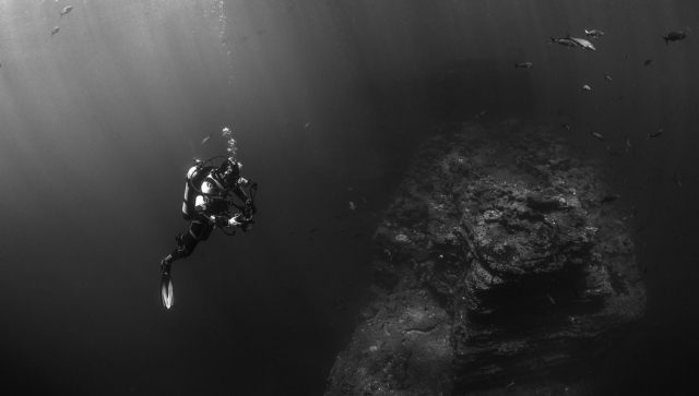 discover diving in tenerife